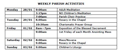 Screen Shot 2019-01-30 at 11 09 22 am - St  Patrick's Catholic